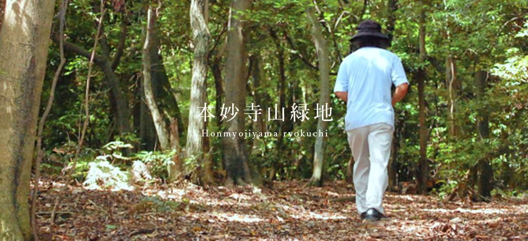 本妙寺山緑地のメインビジュアル