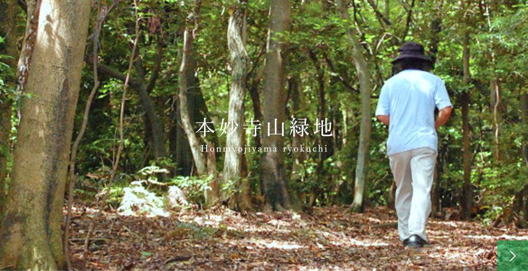 本妙寺山緑地